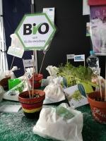 Am Adventsmarkt boten die KlimaDetektive ihre selbstgebackenen KlimaGekocht-Plätzchen den BesucherInnen zum Kosten an.